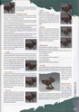 Painting Guide Sample (From Ravage 7) Ravage13