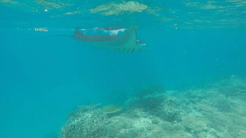 Mayotte  Img_2316