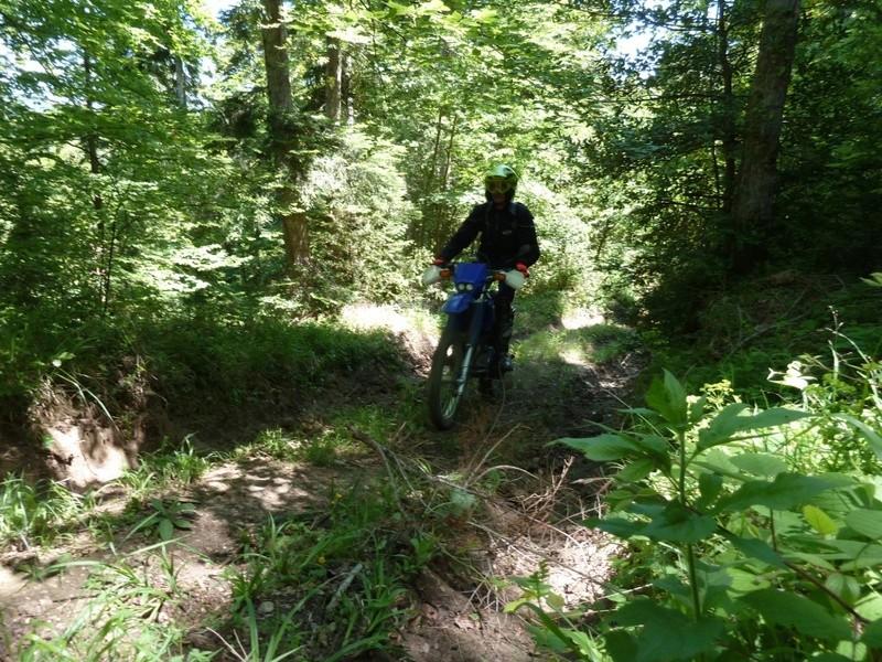 Plateau de sault (version 2) le 24 Mai 2017 Unadju14