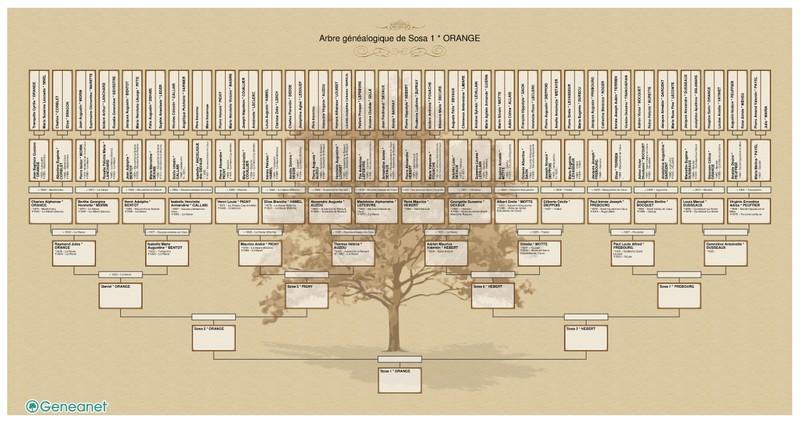 Impression d'un arbre généalogique grand format Arbre10