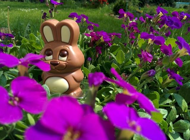 Les origines du lapin de Pâques Chocol10