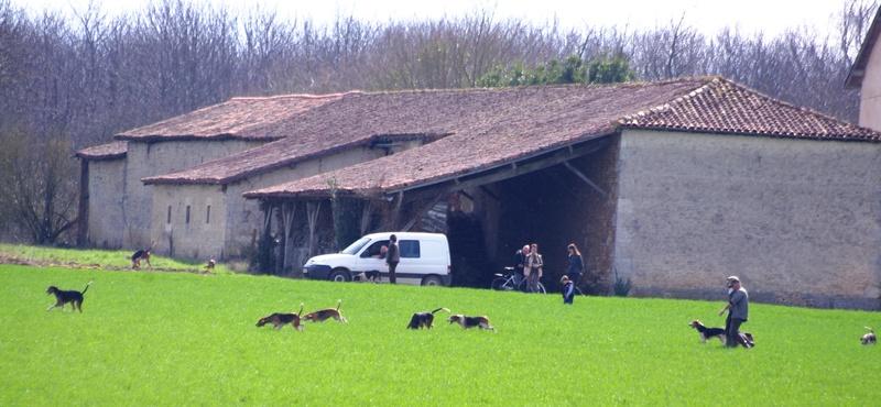 Rallye Au Pas Du Lièvre - Page 5 01014