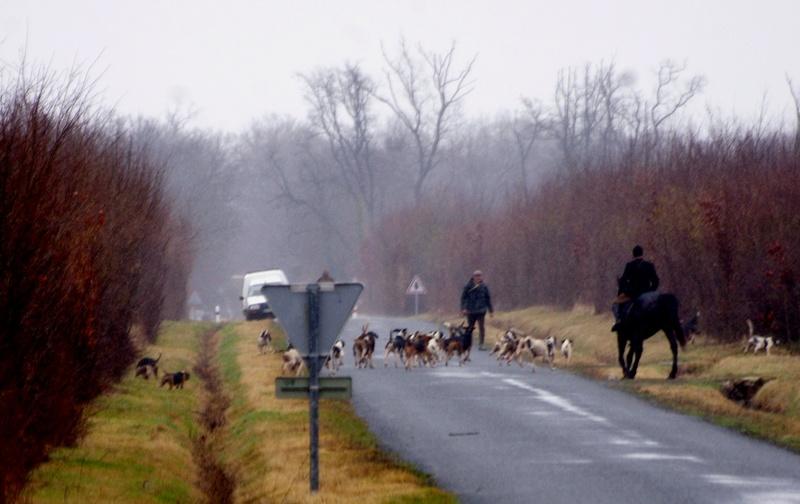Rallye Au Pas Du Lièvre - Page 5 01114