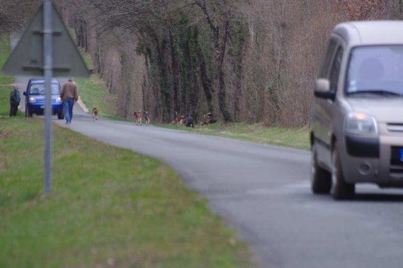 Rallye Au Pas Du Lièvre - Page 5 01715