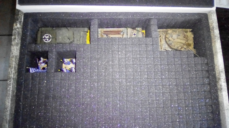 Commande Safe&sound (boite transport fig/vehicule ) Img_2010