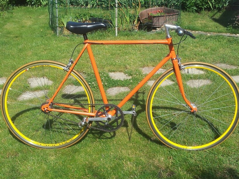 SINGLE SPEED (Ex. Jacques ANQUETIL) 2017-087