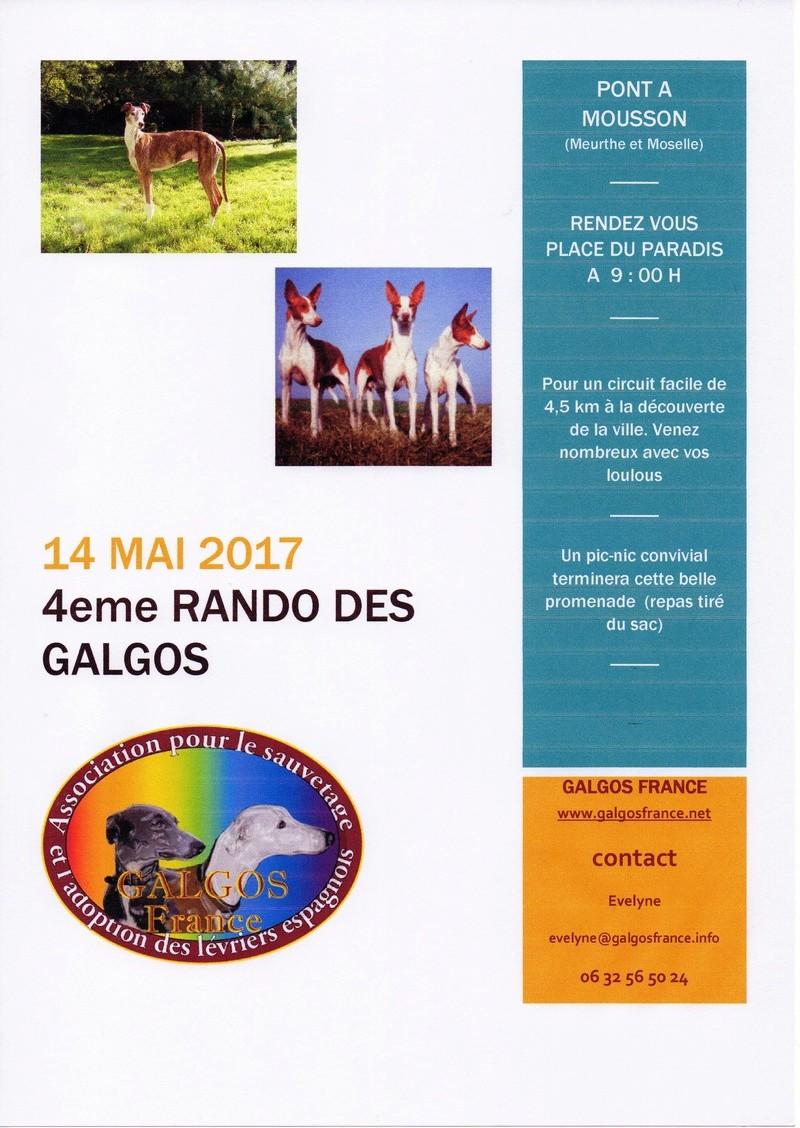 RANDO DES GALGOS 4eme édition  Img03010