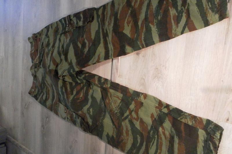 projet mannequin para algerie 1010