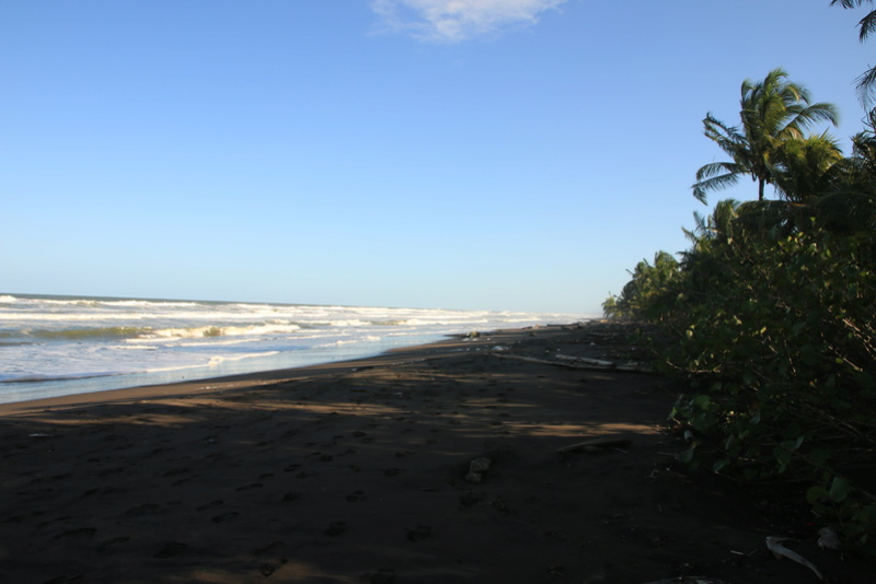 Nature au Costa Rica Img_6520