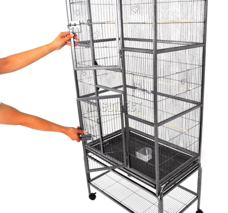 avis sur cage Bird-c11