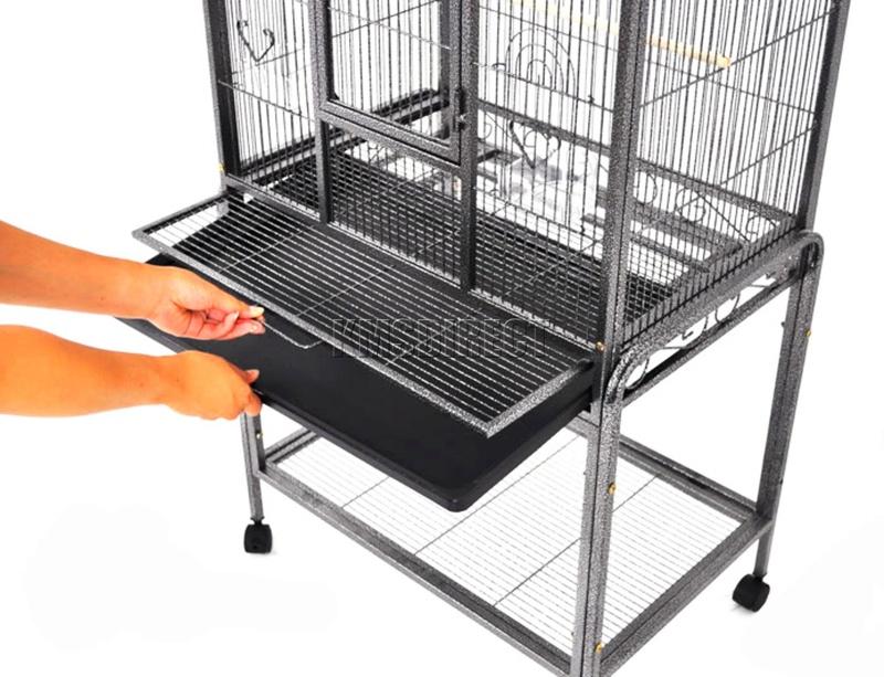 avis sur cage Bird-c14
