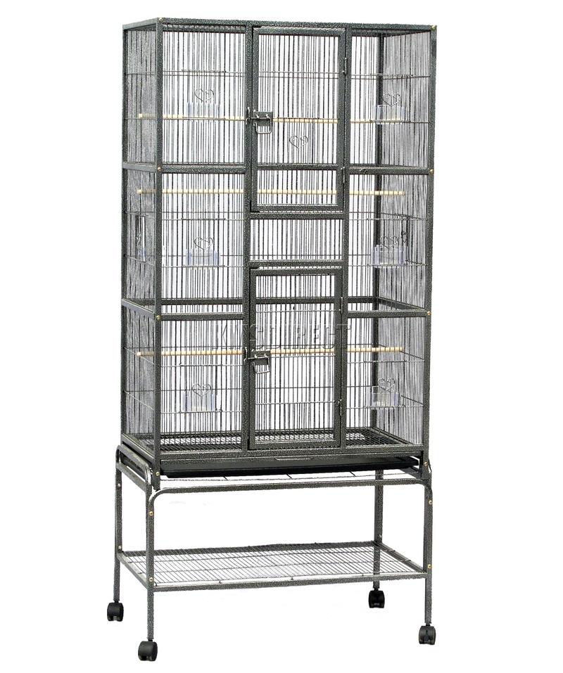 avis sur cage Bird-c17