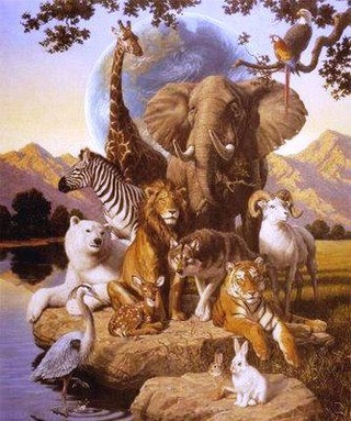 Les animaux totems Animai10