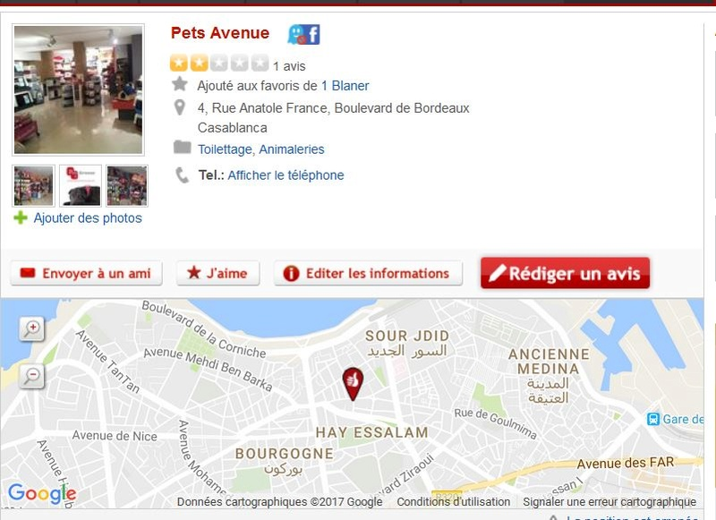 Safi c'est fini , Rapatriement en urgence en France  ?? Petsca11