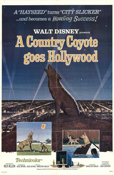 Un Coyote se Rend à Hollywood [Disney - 1965] 1965-c11
