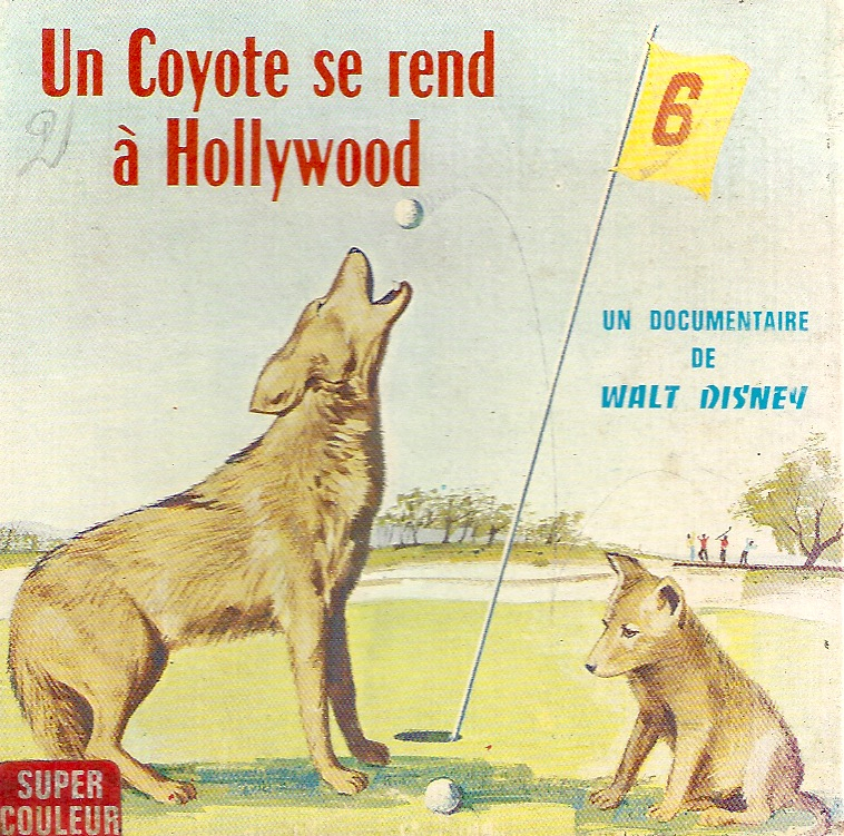 Un Coyote se Rend à Hollywood [Disney - 1965] Coyote10