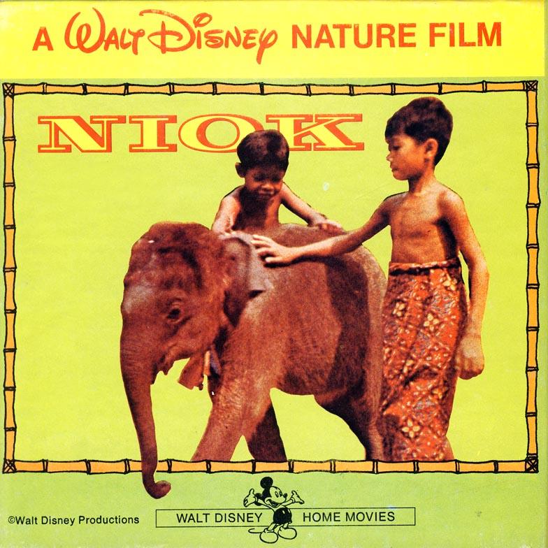 Niok, l'éléphanteau Latest10