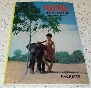 Niok, l'éléphanteau S-l30010