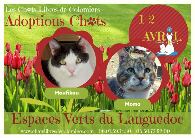 Week-end adoptions aux Espaces Verts du Languedoc du 1er au 2 Avril Affich13