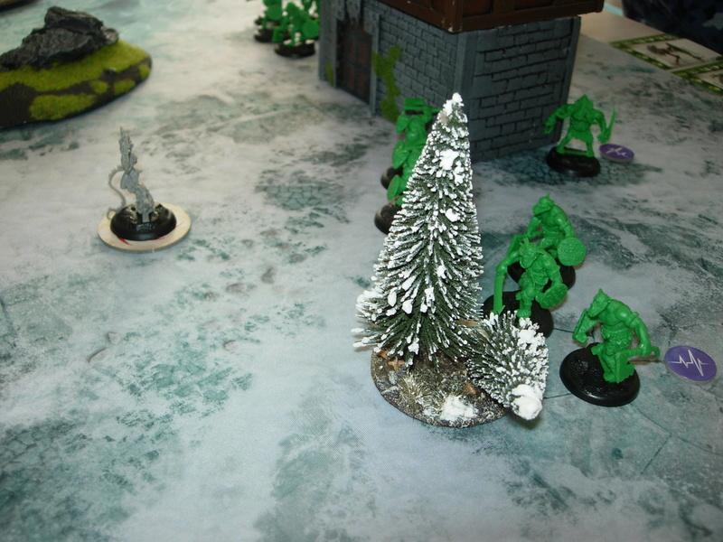 Galerie de bataille Drakerys Dscn0111