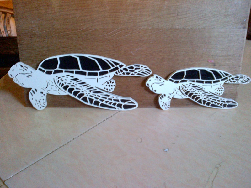 tortues marines recto verso Img-2020