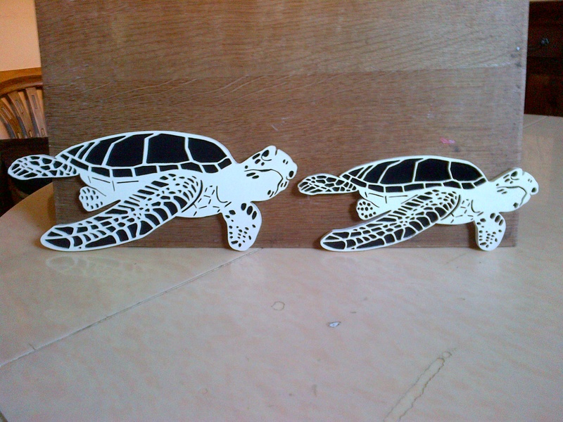 tortues marines recto verso Img-2021