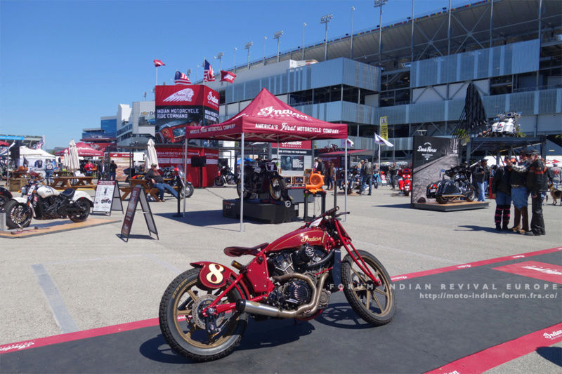 Indian Scout Roland Sand - Daytona 2017 Dsc05431