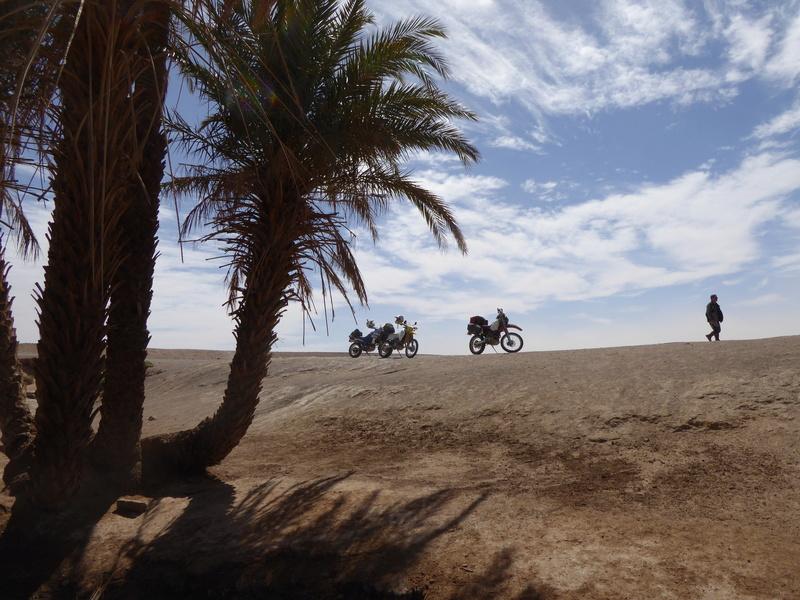 Maroc en Mai ? - Page 4 P1000114