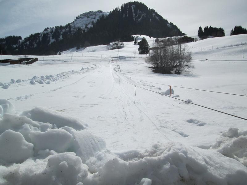 Skilift école (Pony lift) de la Forclaz VD Suisse Img_1940