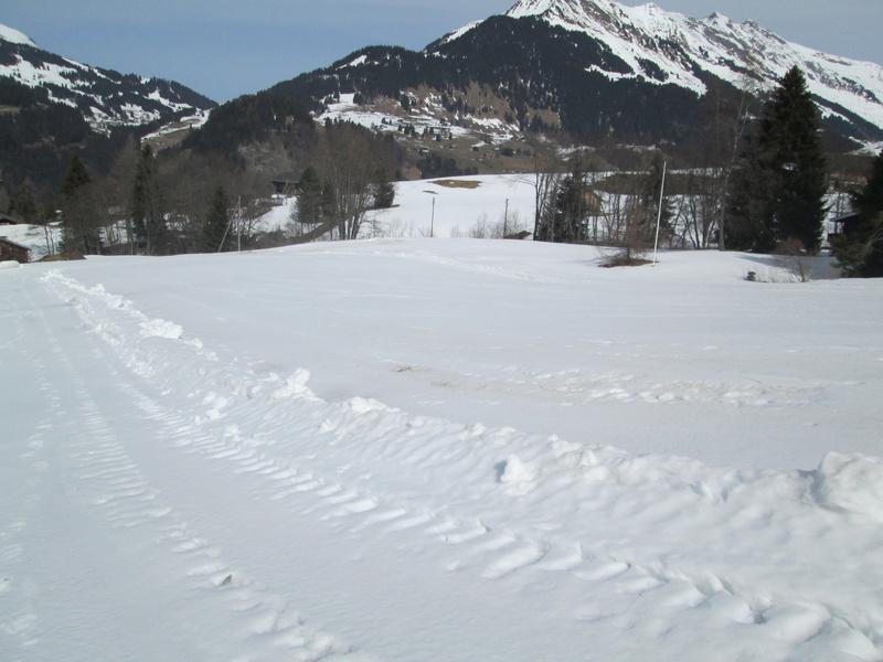 Skilift école (Pony lift) de la Forclaz VD Suisse Img_1942