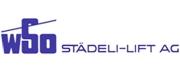 Skilift école (Pony lift) de la Forclaz VD Suisse Stydli10