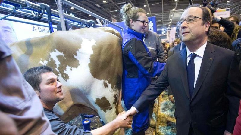 allez , et ça continue !!!  il y a de l'avenir dans le lait !!! - Page 15 Hollan10