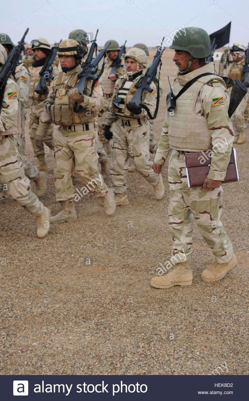 Post-Invasion Tan Iraqi Body Armor Vest with MOLLE Iraqi-10