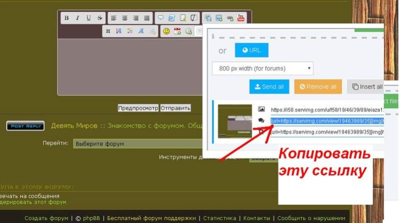 Как загрузить картинку на форум  Eiaza13