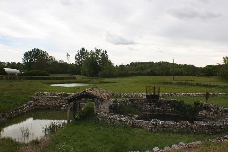 Balade en Quercy Img_1310