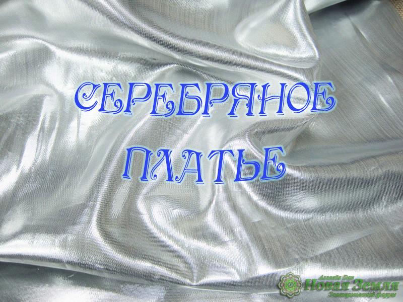Серебряное Платье 12