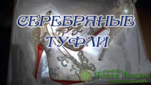 Серебряные Туфли Idoa10