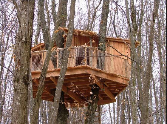 Projet de toboggant pour la cabane dans les arbres de mon fils, vos idées? Captur15