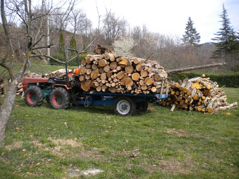 foto dal bosco, i nostri mezzi all'opera - Pagina 4 Dscn0210