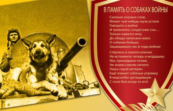 BaDoGood плохая-хорошая собака - Портал 111