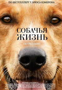 Собачья жизнь 15309212