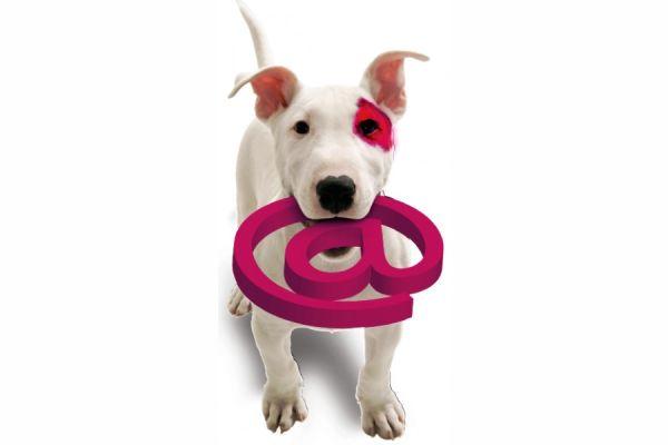 BaDoGood плохая-хорошая собака - Портал 65d30c10