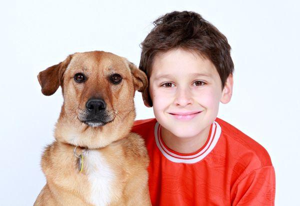 Дети любят собак больше, чем братьев и сестер 73000d10