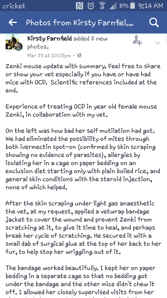 Interesting Info on Treatment for OCD Scratching Screen14