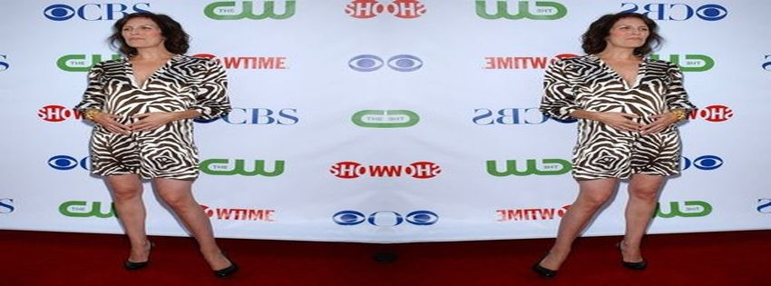 Showtime's TCA Press Tour and Stars Party (2008) 1_1621