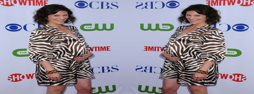 Showtime's TCA Press Tour and Stars Party (2008) 1_1918