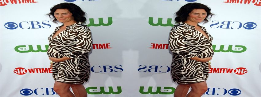 Showtime's TCA Press Tour and Stars Party (2008) 1_2218