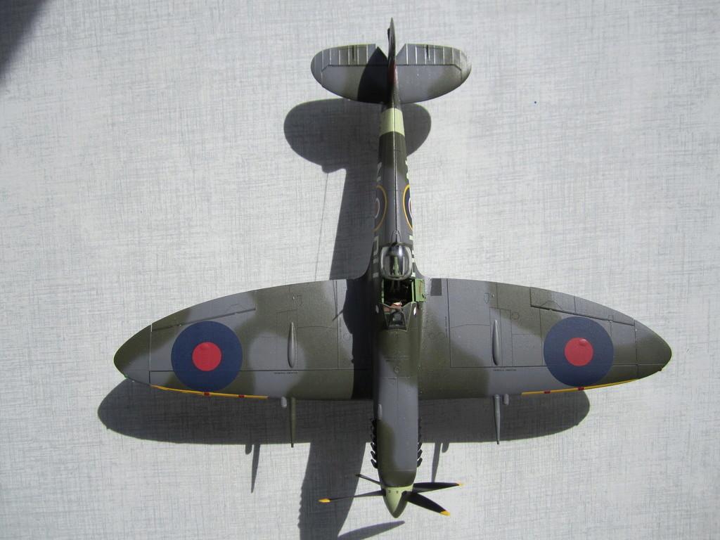 Supermarine Spitfire MK IX C 1/48 Eduard Img_2438