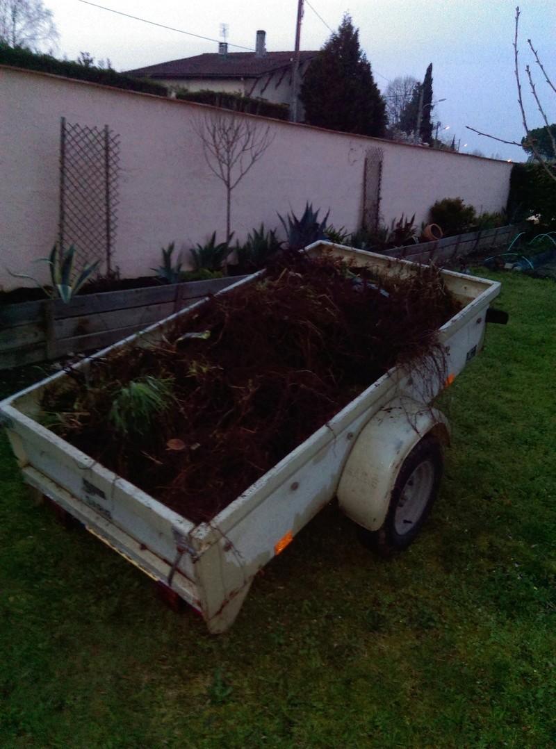 Que se passe t'il au jardin? Imag1312
