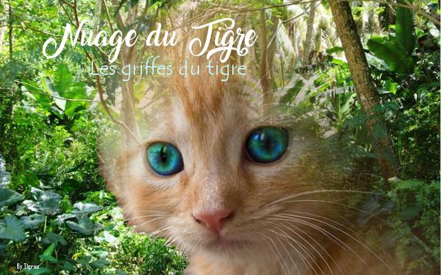 Le Nuage me remplie du caractère du Tigre  Tigrou10